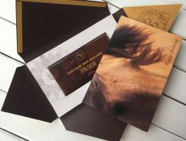 Happy birthday greeting card wth Horse Sweet Post